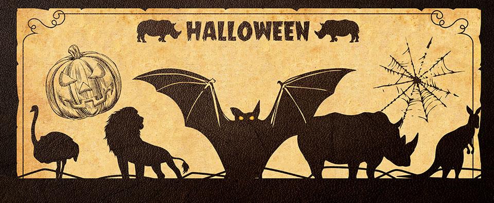 Le grand jeu d'Halloween