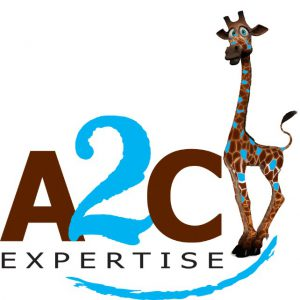A2C Expertise :